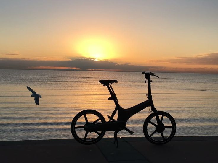 The amazing GoCycle in an amazing location.
