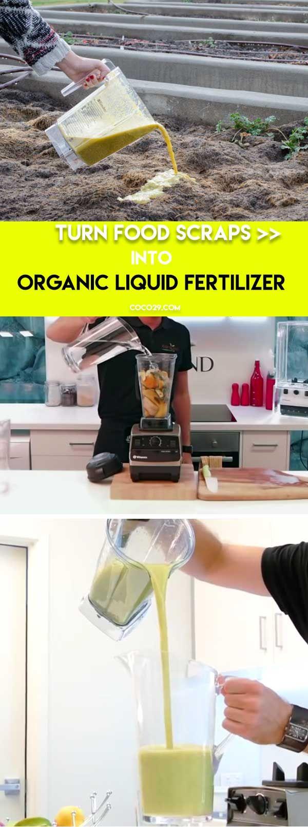 Liquid Organic Fertilizer | Genius Garden Hacks for Beginners | DIY Garden Ideas on a Budget
