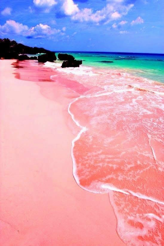 Pink Sand Beach, Bermuda. I loooove it. I will be lying in horse shoe bay Thursday morning. Fuck all you.