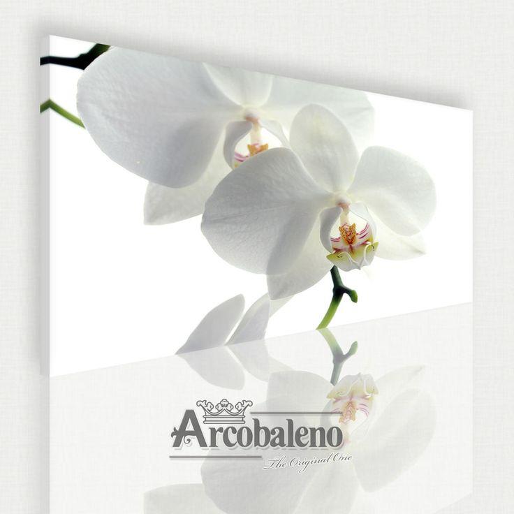 LEINWAND BILD WANDBILD BILDER Orchideen Blumen Orchidee Blume Spa White (A0001) #Blumen #Leinwand #Bild #Bilder #Haus #Home #Design #Wand # Wandbild #Canvas #Rose #WeisseRose #White #white #rose #leinwand #bild #bilder #ebay #Ebay #Auktion #auktion #Kaufen #kaufen #arcobaleno #Arcobaleno #Blumen #blumen #Blume #blume #Garten #Still #style #Kinder #kinder #sofortkaufen