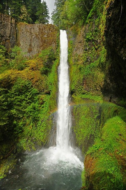 The Eagle Creek Trail on the Columbia River, OR. 6 huge waterfalls and 12.5 mi of awesomeness!