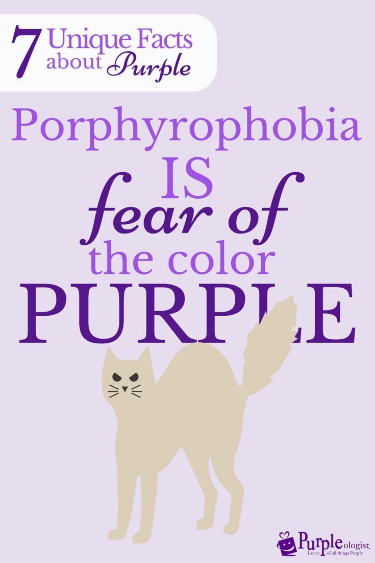 17 best images about alles paars purple slippers don t fear the purple fontys denkgroter
