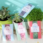5X New Sachets Scented Hanging Fragrance Freshener Wardrobe Car Different Scents