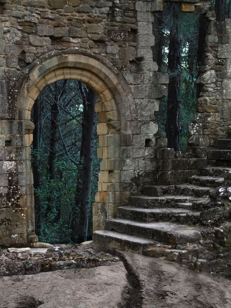where the fae mage goesForests, Doors, Stones Step, Stairs, Castles Ruins, Portal, Abandoned Castles, Windows, Places