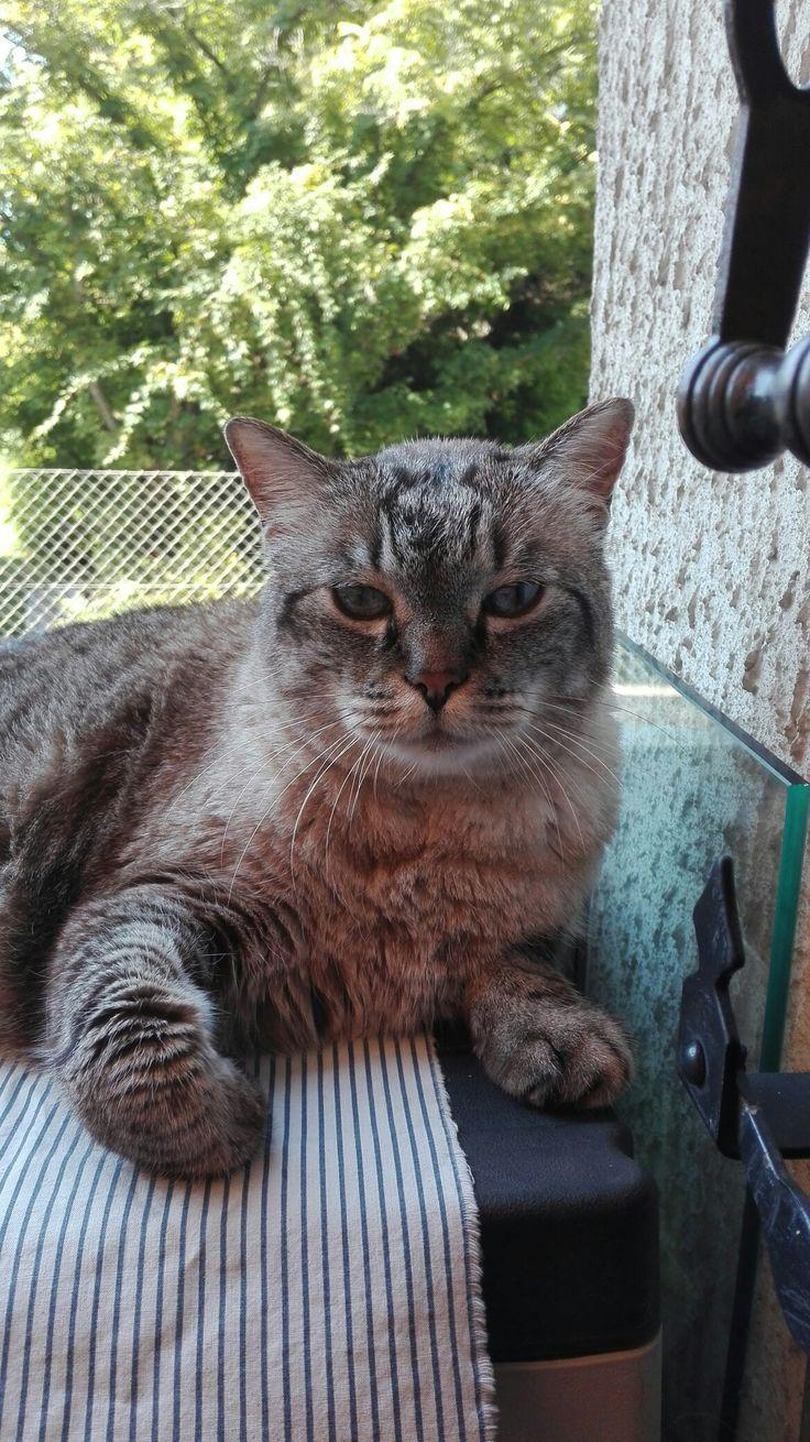 Ivano sul balcone