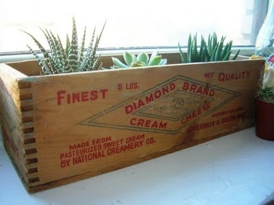 Vintage Planter Window Box http://www.myhomerocks.com/2012/04/the-vintage-label-effect/ #gardening