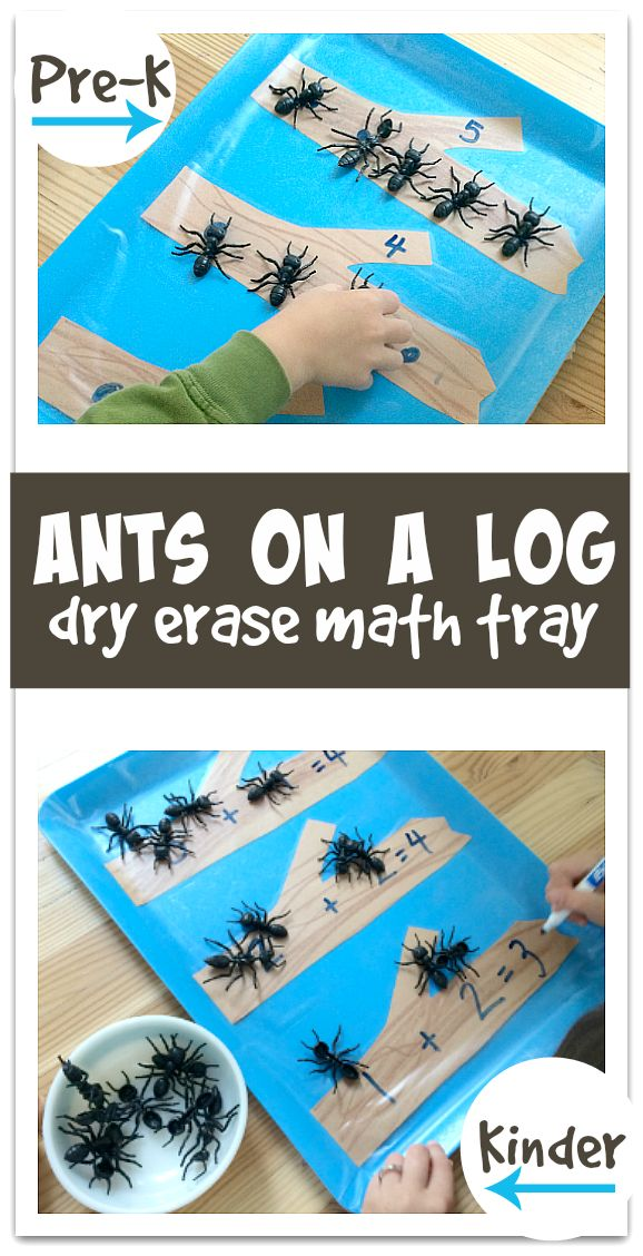 Ants On A Log Math Tray   No Time For Flash Cards   Bloglovin'