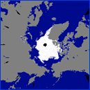 極域環境監視モニター|海氷面積