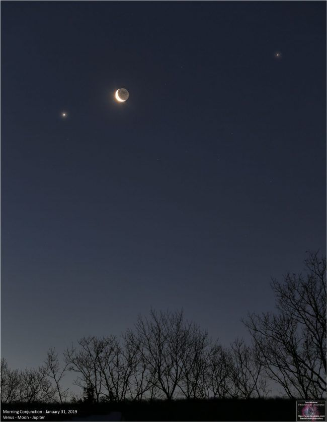 Crescent moon between 2 bright planets, above treetops