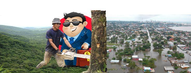 Fotomontaje periodístico: http://www.lagaceta.com.ar/nota/629115/medio-ambiente/desmontes-son-responsables-70-porciento-inundaciones-tucuman-sostuvo-sirimaldi.html