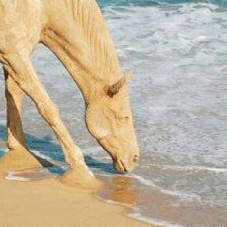 Horse of Sand #Sand #Art #Sculpture #Beach