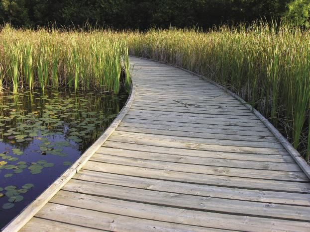 Days Out Ontario | Terra Cotta Conservation Area Hike, Caledon, Ontario