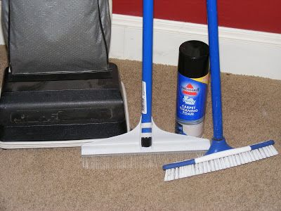 Clean your carpets with a carpet brush vs with a carpet cleaner for a fraction of the cost!