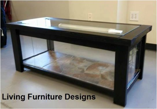 How to build a coffee table to house your bearded dragon or other reptile!