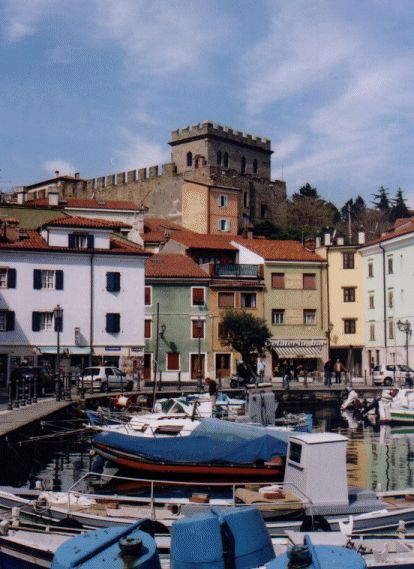 Muggia (Italy), lying on the border with Slovenia, a lovely small fishermen village with the biggest amount of cats I've ever seen.