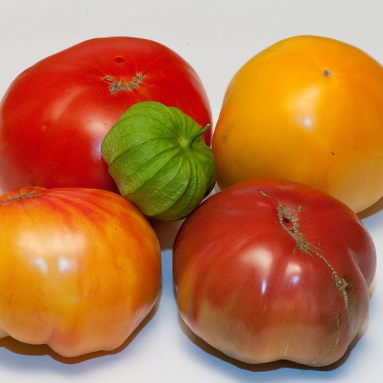 10 Must-Have Crops For a Foodie's Garden: Tomatoes