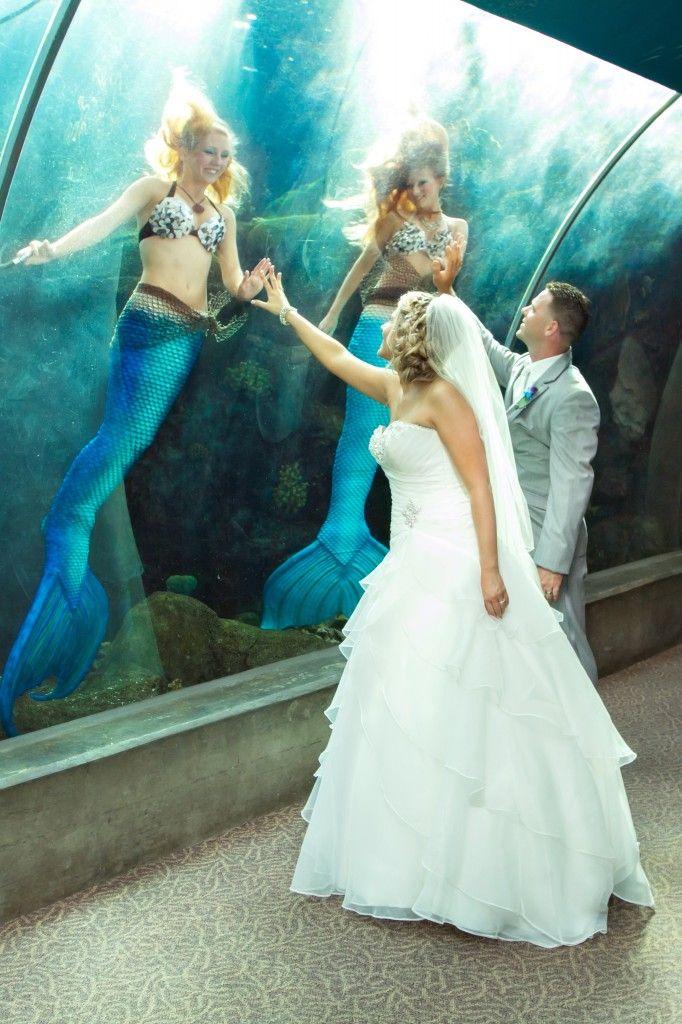 mermaid wedding - downtown tampa florida aquarium wedding