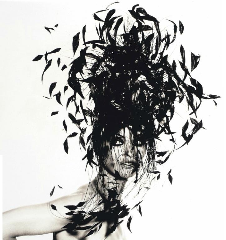 Stripped coque tail feathers: Birds Nests, Dark Eye, Irvine Penn, Irving Penn, Fashion Photography, November 1991, New York, Feathers Hats, Penn 1917 2009