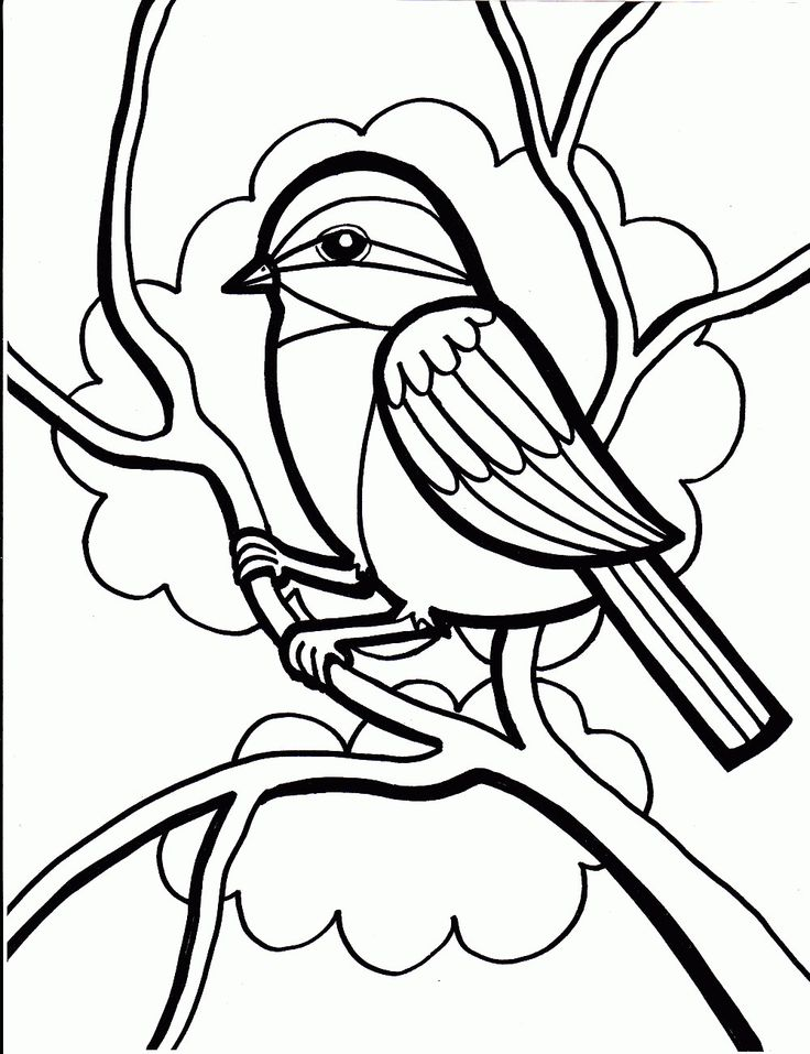 free printable color pages image 29 post at may 20 2016 - Free Printable Coloring Pages Birds