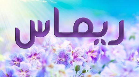 أصل ومعنى اسم ريماس Rimas في اللغة العربية وصفاتها موقع مصري In 2021 Meant To Be