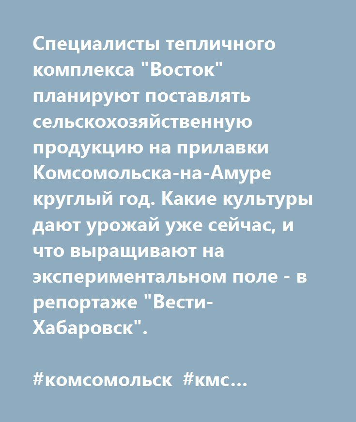 """Специалисты тепличного комплекса """"Восток"""" планируют поставлять сельскохозяйственную продукцию на прилавки Комсомольска-на-Амуре круглый год. Какие культуры дают урожай уже сейчас, и что выращивают на экспериментальном поле - в репортаже """"Вести-Хабаровск"""".  #комсомольск #кмс #комсомольскнаамуре #komsomolsk #kms #komsomolskonamur #хабаровск #владивосток #vdk #khab #Khabarovsk #vladivostok"""
