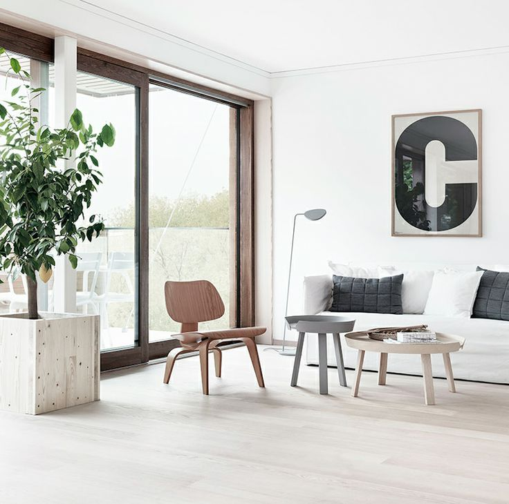 facing north with gracia: Raw wood and white interiors