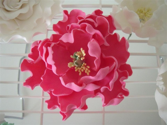 sugar peony by cake by kim, via Flickr