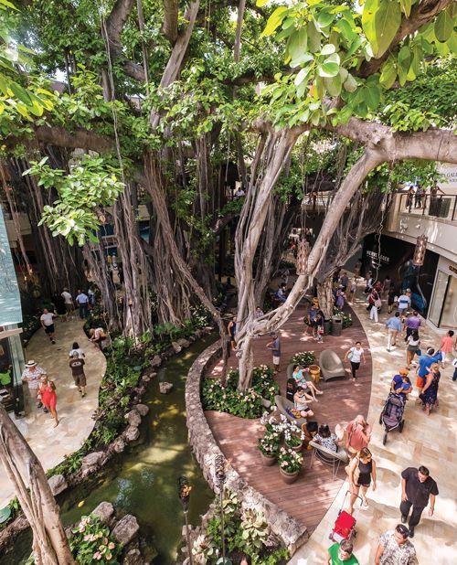 3 International Market Place Restaurants That are Worth the Trip to Waikīkī
