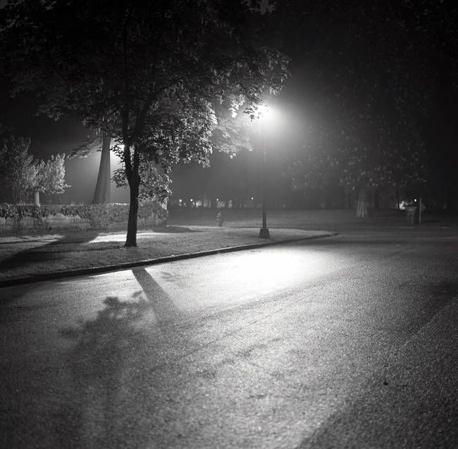 """Summer Mist"" by Gerald Finnegan, USA // Streetlamp and Shadows in Fog Black and White scene, on the edge of a park, a lone streetlamp illuminates the corner, casting shadows in the foggy night.   // Imagekind.com -- Buy stunning, museum-quality fine art prints, framed prints, and canvas prints directly from independent working artists and photographers."