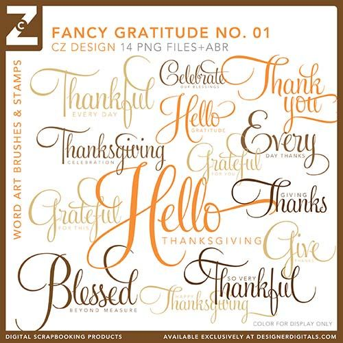Digital files: Fancy Gratitude No. 01 Brushes and Stamps - Photoshop Brushes by Cathy Zielske on Designer Digitals