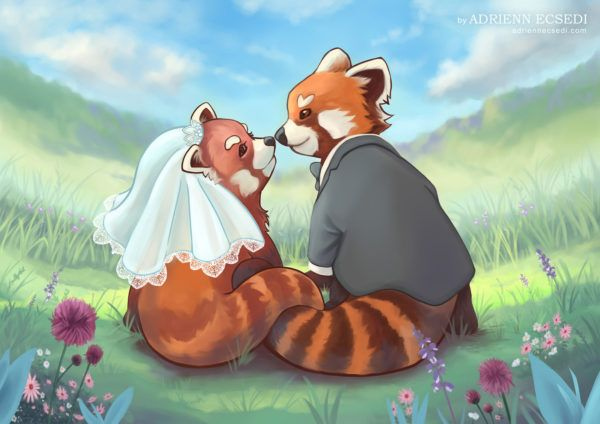 Red Panda Couple by Adrienn Ecsedi, 2016  This red panda couple painting was commissioned from me, it was made as a wedding gift.