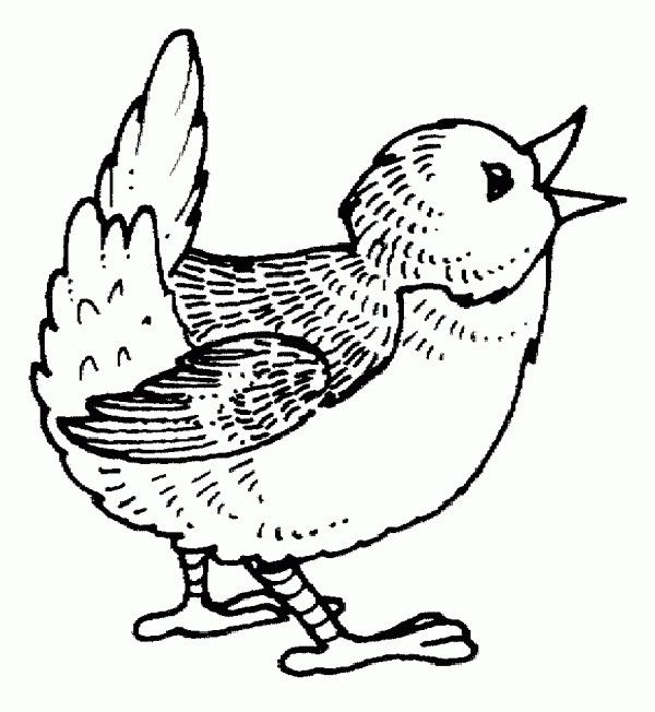 Springtime Coloring Sheets Singing Bird