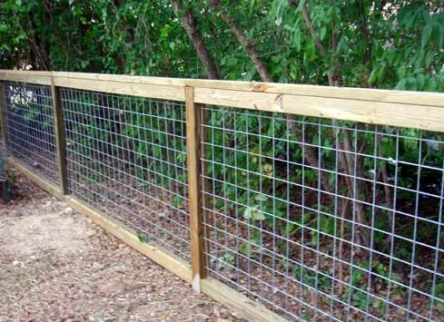 Simple, clean fence using cattle panels. Could be an inexpensive but strong deer fence solution if a second cattle panel was run across the top to make it twice as high. Cattle panels cost about $20 for a 50in x 16ft panel.