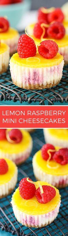 Lemon Raspberry Mini Cheesecakes - Easy to make and a delicious dessert recipe!: