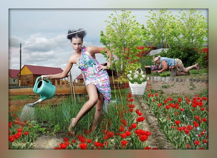 картинки выходные огород прикольные преимуществом
