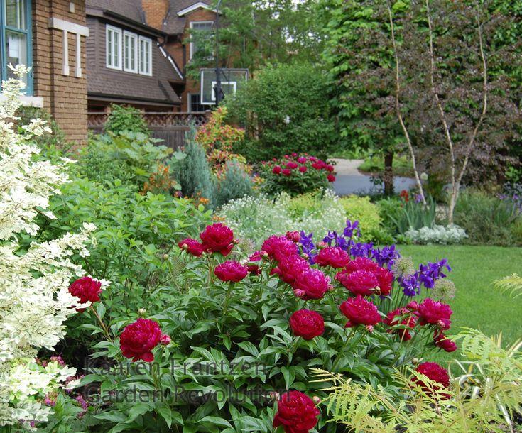 kaaren frantzen garden revolution chicago perennial - Flower Garden Ideas Illinois
