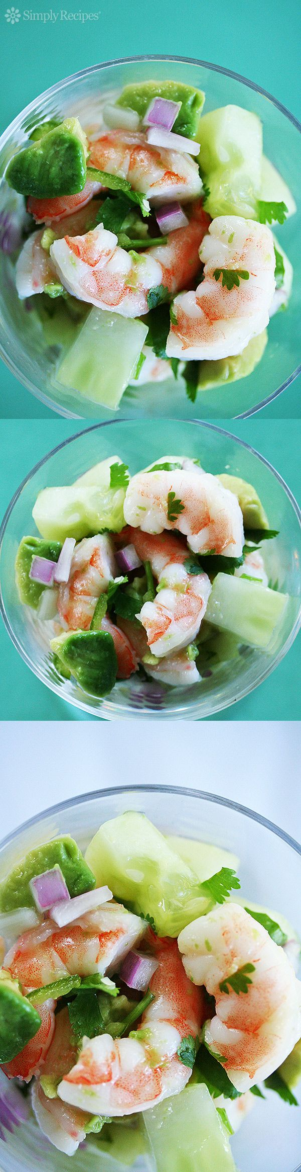 EASY Shrimp Ceviche! Cool and tasty shrimp ceviche, with shrimp and chopped red onion, chile, cilantro, cucumber, avocado, lemon and lime juices. On SimplyRecipes.com
