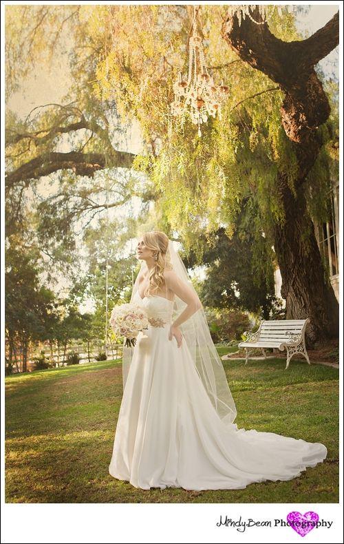 Green+Gables+Estate+Wedding+Pictures+»+Las+Vegas+Wedding+Photographer chandelier in tree!