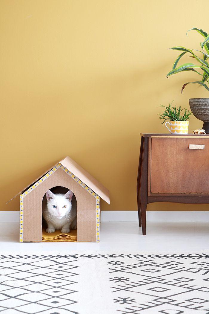 Katten zijn eigenaardig, verminderen stress en zijn social media koning pur sang. Fan of niet, met deze cat DIY's maak je vrienden voor het…