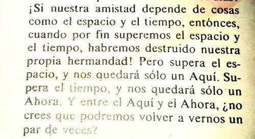 Juan salvador gaviota.~ así debe ser nuestra verdadera amistad!