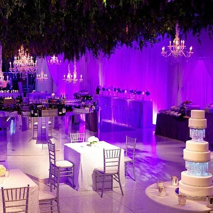 476 best eventparty decor images on pinterest weddings couches sparkling purple birmingham wedding with exotic orchids junglespirit Gallery
