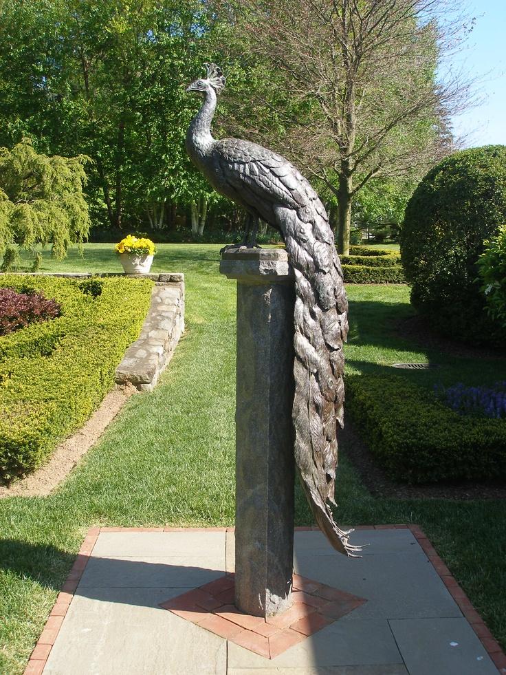 Metal Garden Peacock Sculpture Gardening Pinterest