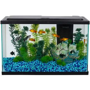 5 gallon tank, Aqua Culture Aquarium Starter Kit, aprox $30: good betta tank. Your betta will display beautiful swimming, flaring and exploring behavior in these larger tanks that you may not see when they are kept in smaller habitats.