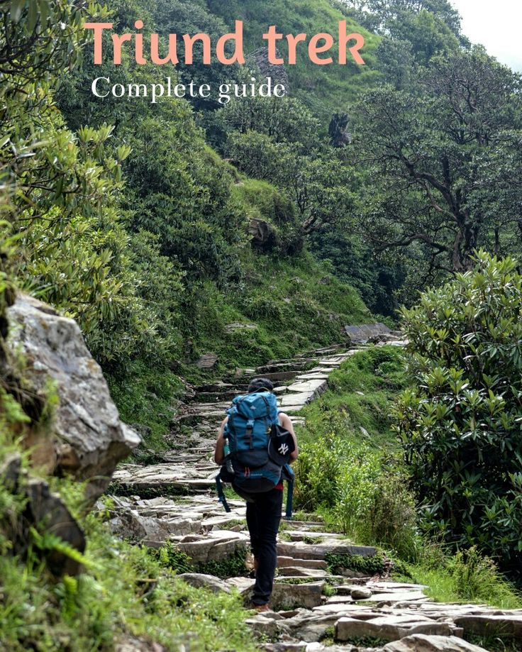 Located in the lower Himalayas, McLeodganj is a well known backpackers destinations. The trek to Triund is a moderate trek where you can experience the beauty of Himalayan mountains. A must do on your visit to Dharamsala #dharamsala #McLeodganj #Triund #HimachalPradesh #Himalayas