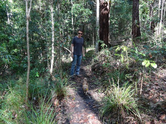 Photo of Foote Sanctuary of Buderim