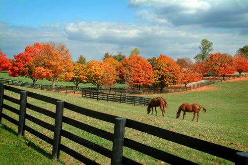 11 Reasons Why Lexington In Fall Is Heaven On Earth