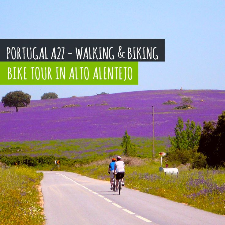 Cycle on the lovely back roads of Portugal countryside.