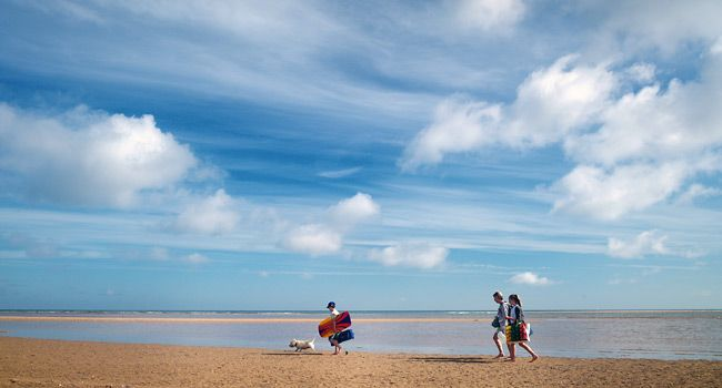 Holkham Beach - Windswept tidelines, miles of dunes, shady pinewoods, green pastures & marshes. Dogs welcome on & off the lead as long as under control. Don't forget Pooch's Home Baked Biscuits are for sale at Holkham Hall & the Beach cafe in Wells!