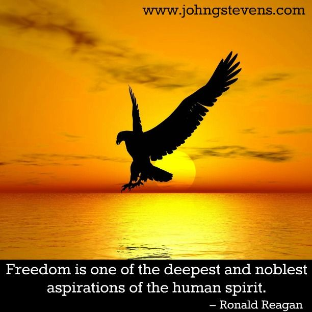 Freedom is one of the deepest and noblest aspirations of the human spirit.   – Ronald Reagan  #johngstevens #freedom #noble #aspirations #humanspirit