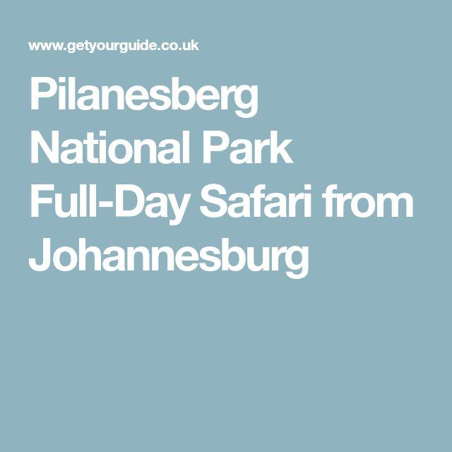 Pilanesberg National Park Full-Day Safari from Johannesburg